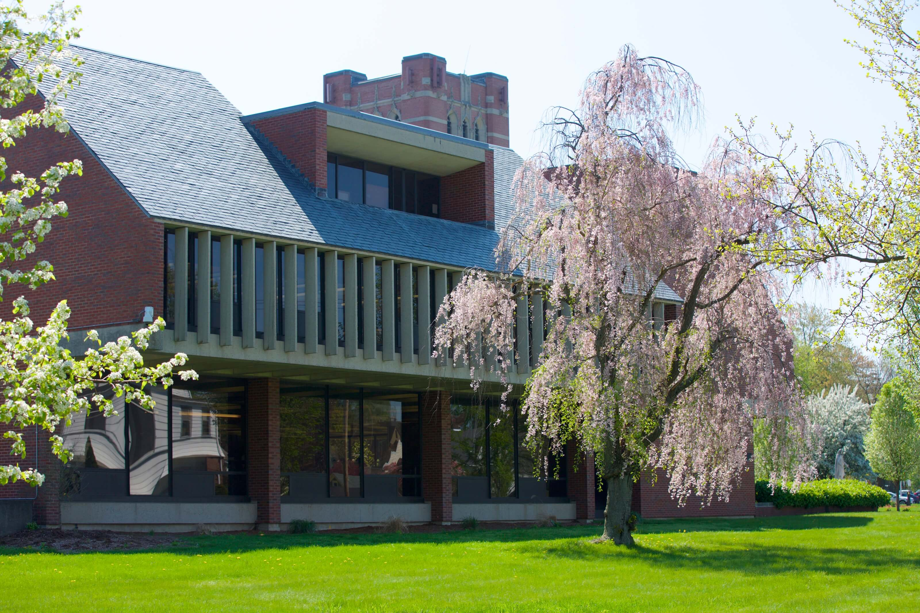 Photo of Alumnae Library